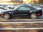2013 Ford Mustang V6 Conv.