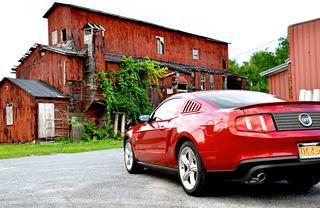 Mustangcandd6small
