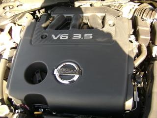 Steves Car 007