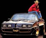Burt On Bandit