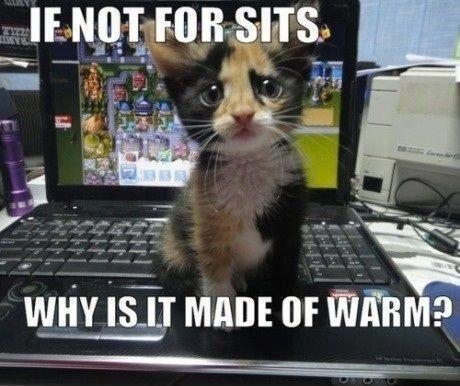 If Is Not For Sits Then Why It Is Made Of Warm