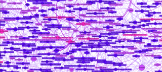 Conceptual Continuity Map