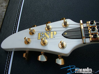 Horizon Iii Custom Paul Pw 10