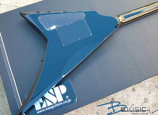 Esp Custom Rsv 22