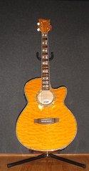 AC-30 Acoustic