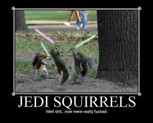 03 Jedi Squirrels