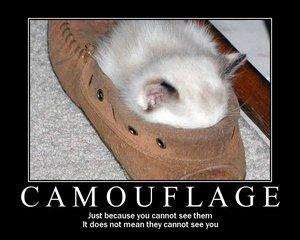 Camouflageqe8