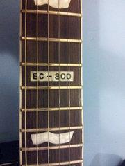 LTD EC-300