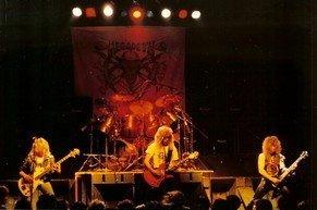 Megadeth84
