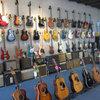 Electric Acoustic Guitars Basses 03