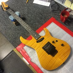 "ESP Custom Shop ""Maverick"""