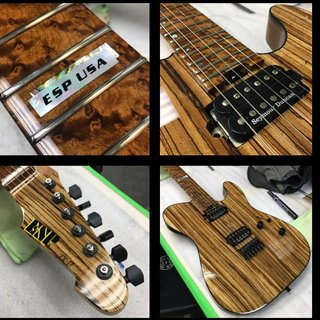 #1 of 15 Limited Edition ESP USA Zebra wood TE's