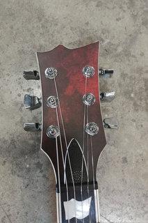 Vinyl Guitars Dark Blood 03