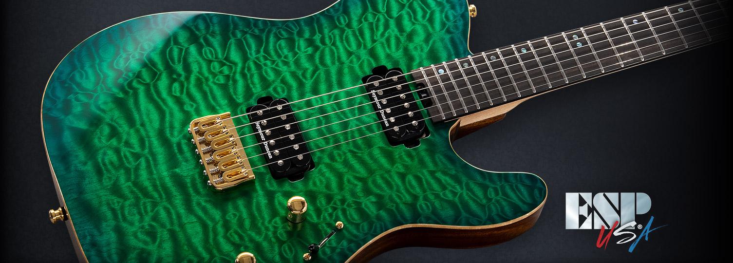 USA TE-II HARDTAIL - The ESP Guitar Company