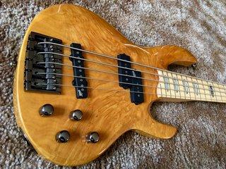 Tribute for Rocco Prestia ESP LTD Bass Guitars 281