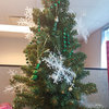 A Snowflake Tree in Member Services