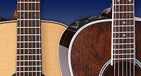 12-Fret vs. 14-Fret Guitar Styles: Which Is Right for You?