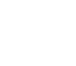 Tone Shop Guitars Online